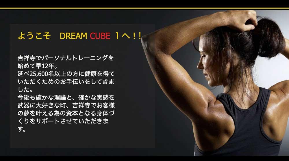 DREAM CUBE 1