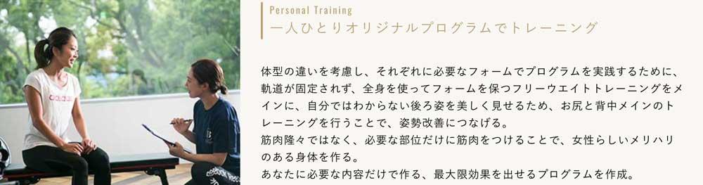REVIASのトレーニング